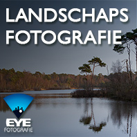 Workshop landschapsfotografie Brabant